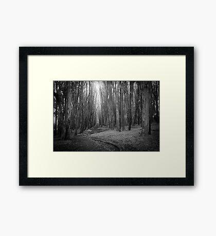 Wood Line Framed Print
