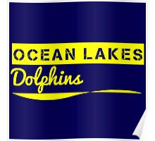 For all those Ocean Lakes High School Fanatics Poster