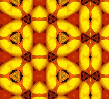 Kaleidoscope Geometry Pattern From Nature 49 by Kenneth Grzesik