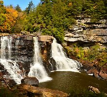 Blackwater Falls  by Terry Everson