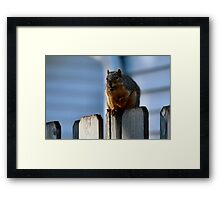 I'm undertall...not over weight.  Framed Print