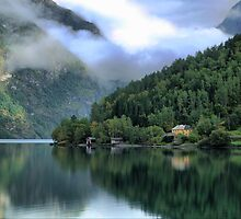 Tranquillity Green on the Sognefjord (1) by Larry Lingard-Davis