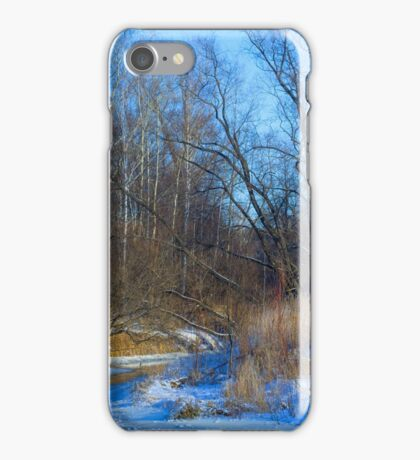 Frozen river iPhone Case/Skin