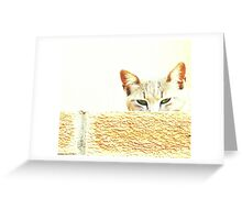 Wary eyed Greeting Card