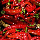 Beautiful New Mexico Red Chile by Loree McComb