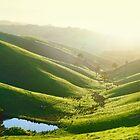 Green Hills, Gippsland, Victoria, Australia by Michael Boniwell