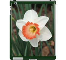 One White Daffodil iPad Case/Skin