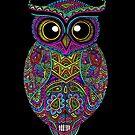 Skull Owl by Octavio Velazquez
