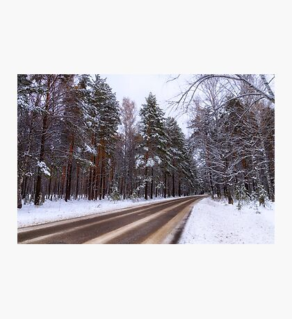 Winter. Forest. Road. Photographic Print