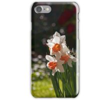 Daffodil Bokeh iPhone Case/Skin