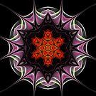 Flaming Star by Ann  Van Breemen