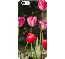 Glorious Tulips iPhone Case/Skin