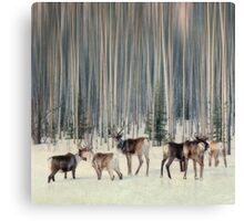 Caribou and trees Canvas Print