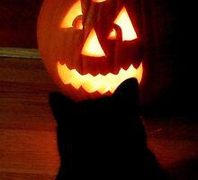 Halloween Stare Down (iPhone) by Sandy Woolard