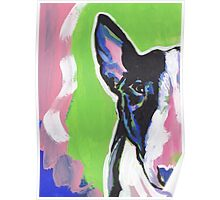 Bull Terrier Dog Bright colorful pop dog art Poster