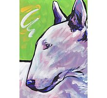 Bull Terrier Dog Bright colorful pop dog art Photographic Print