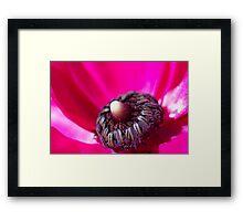 Inside Hot Pink Flower - macro Framed Print