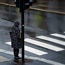 Crossing by Geraldine Lefoe