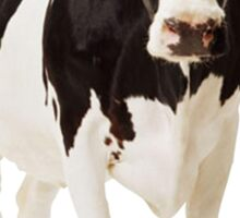 Cow (awesome for iPhone cases) Sticker