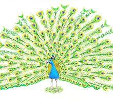 Peacock by jojo456