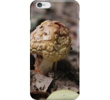 mushrooms in the forest iPhone Case/Skin