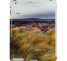 Windswept strait iPad Case/Skin