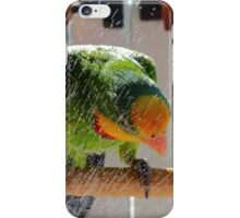 Shower Power - Barraband Parrot - NZ iPhone Case/Skin