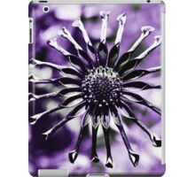 Osteospermum - Black Widow iPad Case/Skin