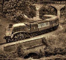 Sir Nigel Gresley Locomotive - Sepia by © Steve H Clark