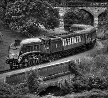 Sir Nigel Gresley Locomotive - Black and White by © Steve H Clark Photography