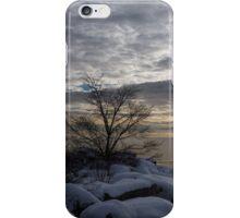 Lakeside Silver – Winter Morning Light iPhone Case/Skin