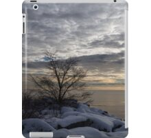 Lakeside Silver – Winter Morning Light iPad Case/Skin