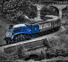 Sir Nigel Gresley Locomotive - Colour Popped by © Steve H Clark