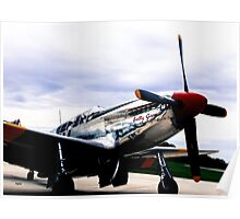 Flying with Betty Jane  Poster
