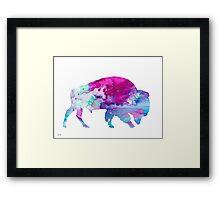 Bison 4 Framed Print