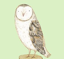 Barn Owl by Sophie Corrigan