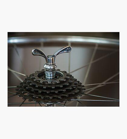 Freewheel Photographic Print