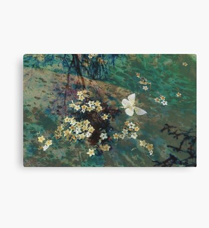 The Butterfly Pond Canvas Print