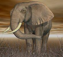Elephant by Bundestagswahl