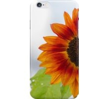 sunflower in the garden iPhone Case/Skin