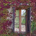 window of the house by spetenfia