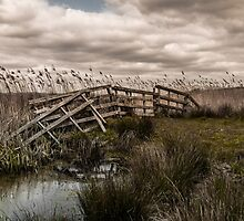 A gate to nowhere by jamesdt
