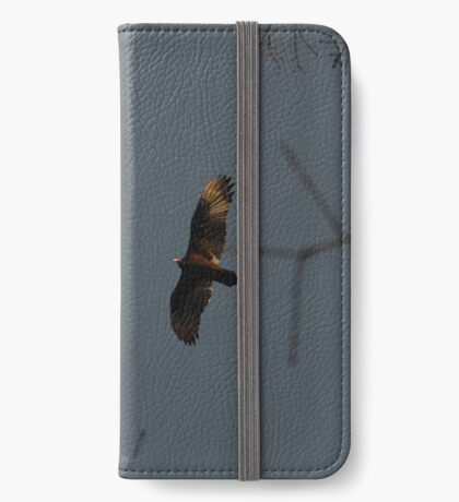 Buzzard Returning To Roost iPhone Wallet/Case/Skin