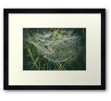 Misty Wonder Framed Print