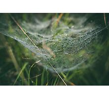 Misty Wonder Photographic Print