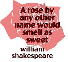 a rose by any other name... william shakespeare by aastrid