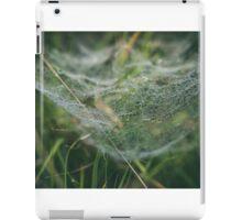 Misty Wonder iPad Case/Skin