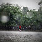 monsoon surf by wellman