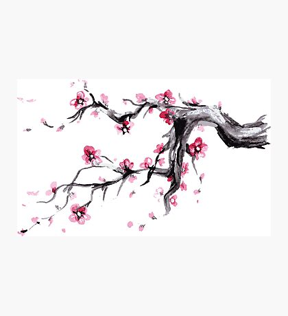 Watercolor Spring blossoms - japanese symbol Photographic Print