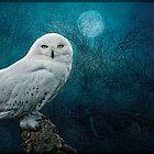 Night Owl by Tarrby